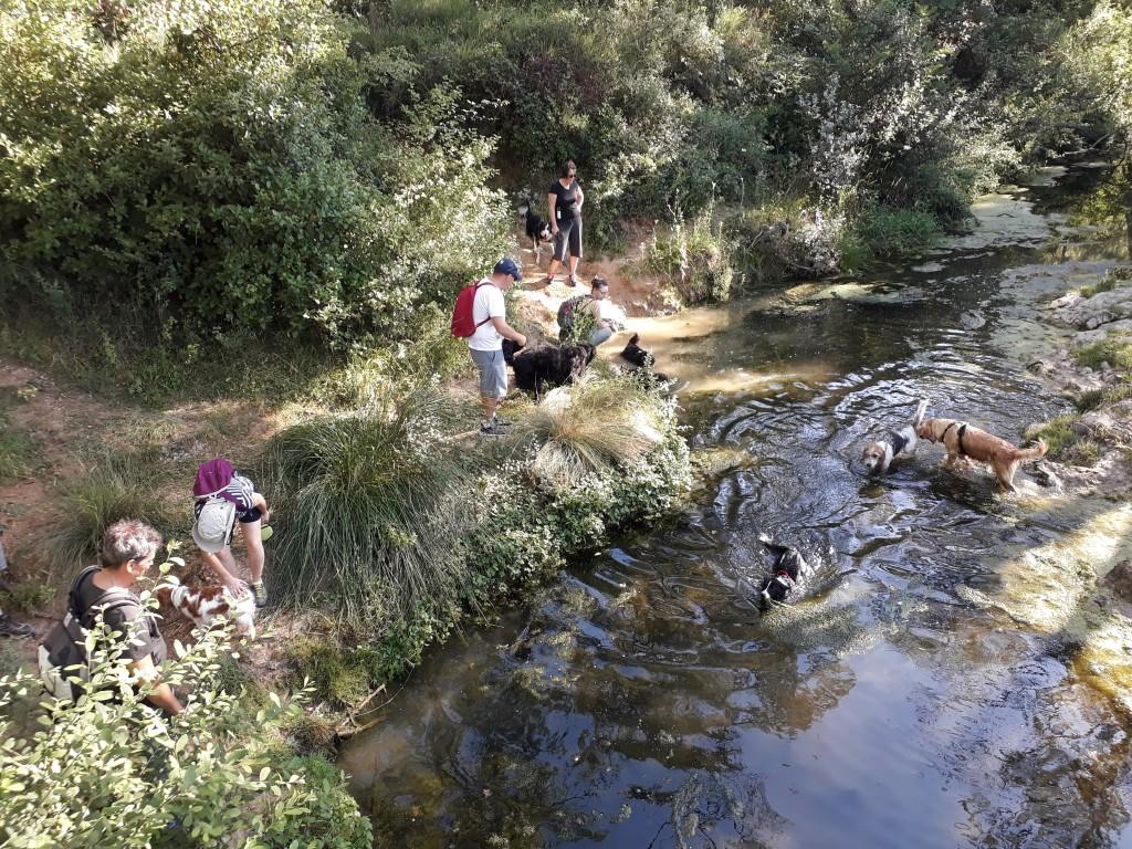 Rivière Grabels
