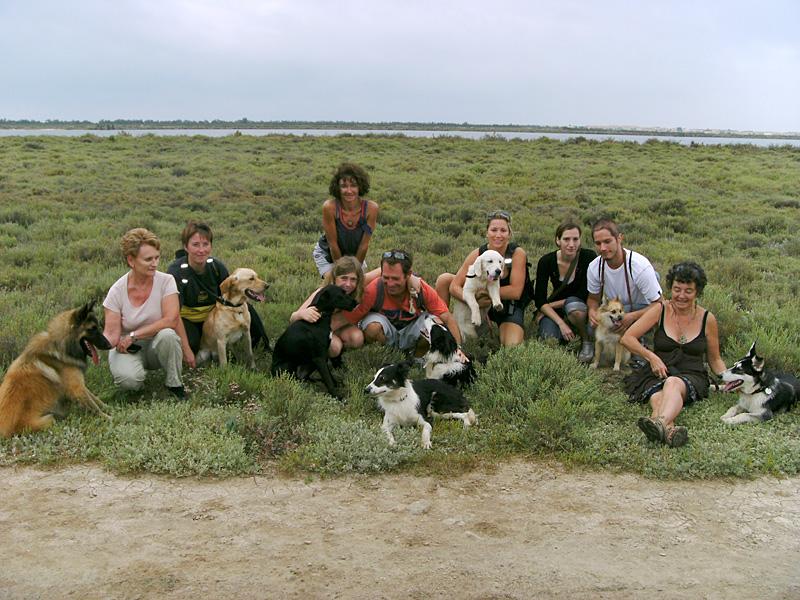 Dogspirit - Balade éducative - Cours collectif - 11 septembre 2011
