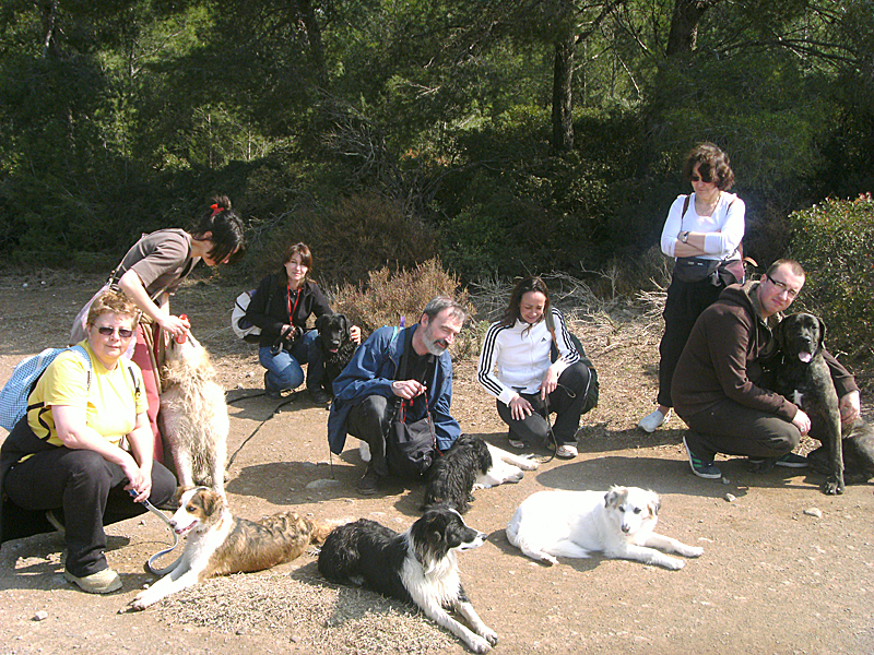 Dogspirit - Balade éducative - Cours collectif - 25 mars 2012