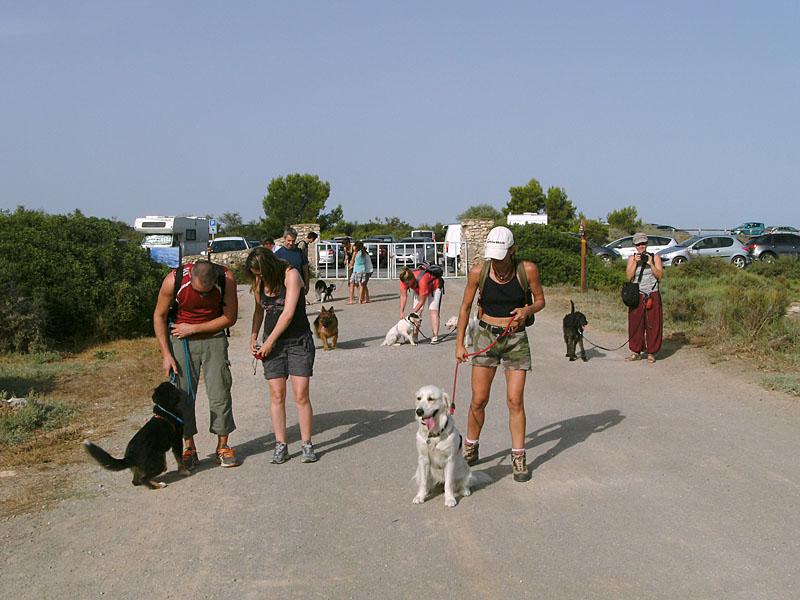 Dogspirit - Balade éducative - Cours collectif - 19 août 2012