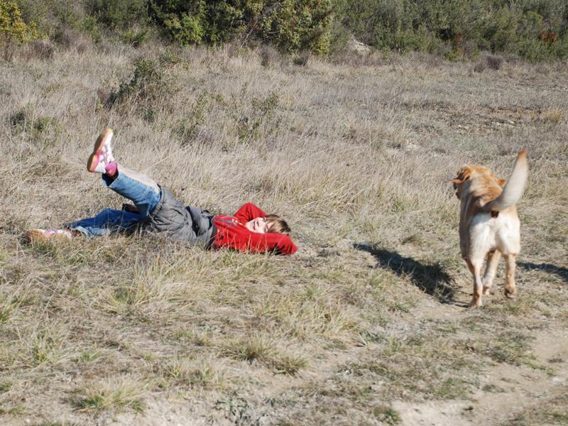 Dogspirit - Balade éducative - Cours collectif - 20 février 2013