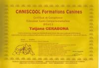 Dogspirit - certificat des connaissances, Caniscool