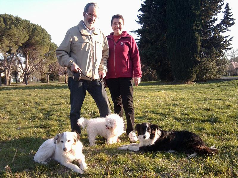 Dogspirit - Livre d'or - Dressage attentif et professionnel