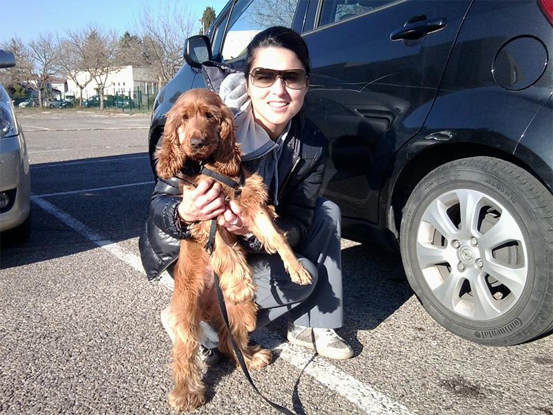 Dogspirit - Une éducation canine ludique et en douceur