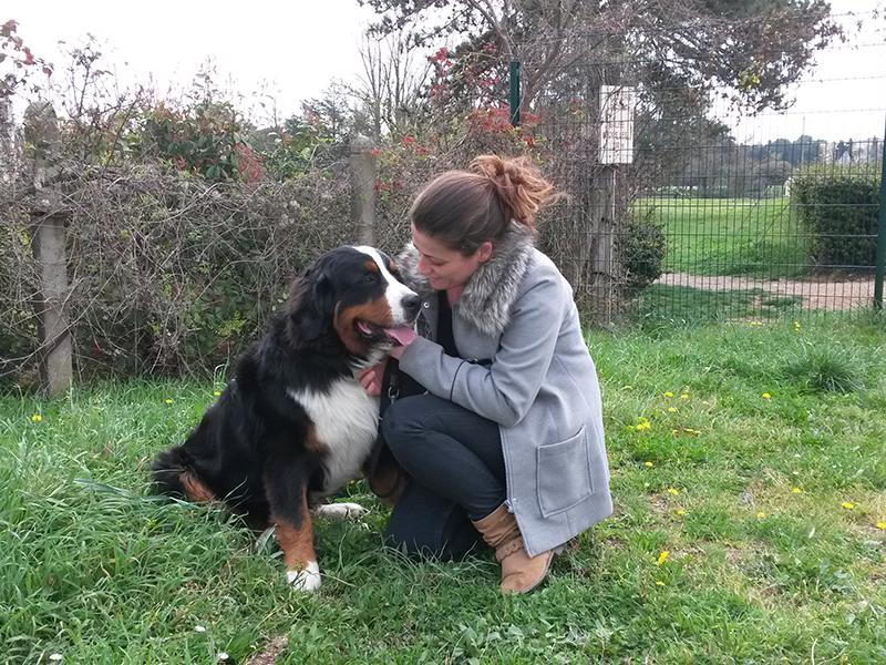 Dogspirit - Livre d'or - partager le language du chien