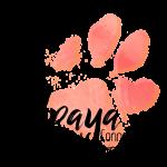 dogspirit partenaire - UPAYA Soins & Connexion animale