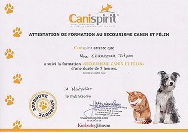 TatjanaCerabona - Canispirit Formation au Secourisme Canin et Félin