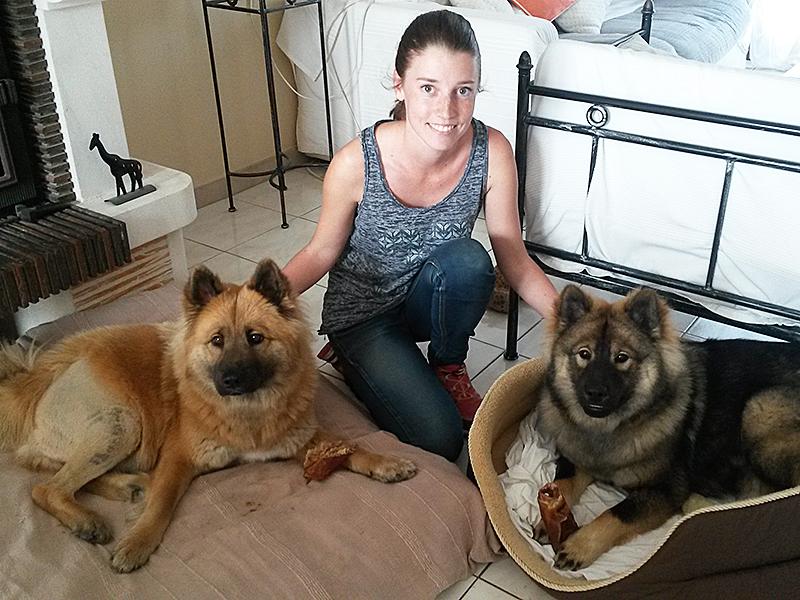 Dogspirit livre d'or - Comment anticiper la peur des véhicules avec ma chienne