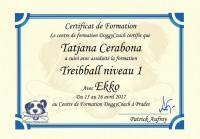 tatjana_cerabona_treibball_niveau1