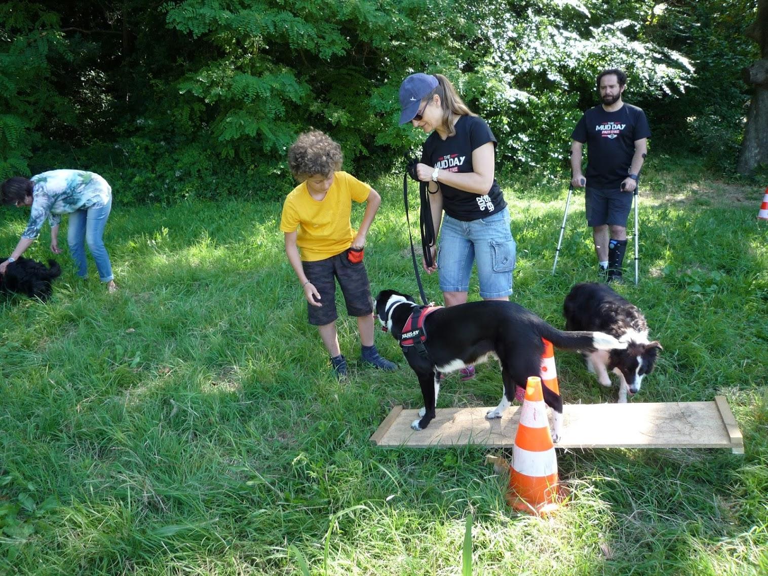 Dogspirit - cours collectif, initiation à l'agility - 25 juin 2016