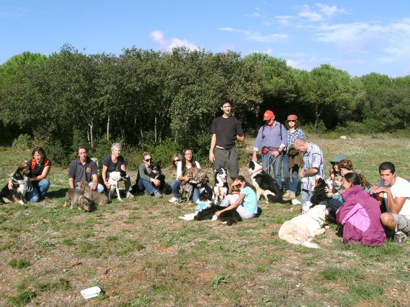 Dogspirit - Balade éducative - Cours collectif - 27 octobre 2013