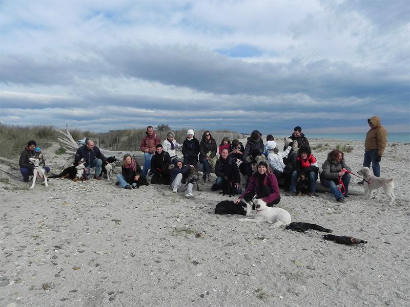 Dogspirit - Balade éducative - Cours collectif - 30 novembre 2013