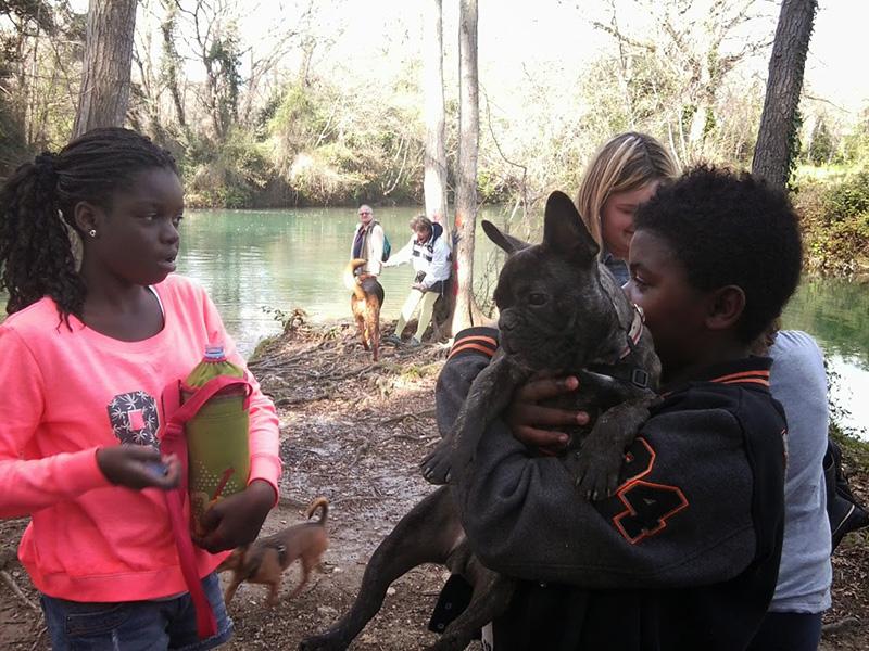 Dogspirit - Balade Educative - 2014-26-03