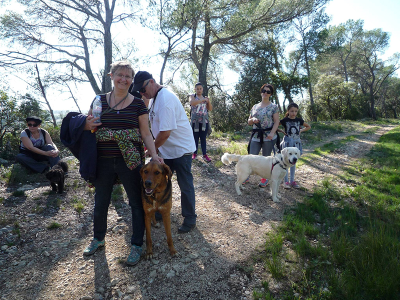 Dogspirit - Balade Educative - 2014-26-10