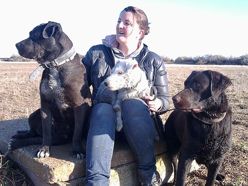 dogspirit_livre_d_or_bilan_canin_formidable