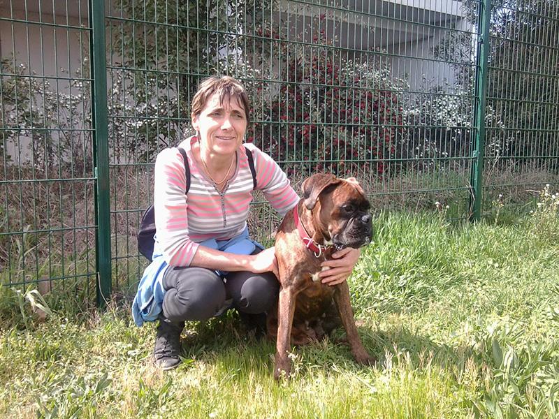 Dogspirit - Livre d'or - Boxer un chien formidable